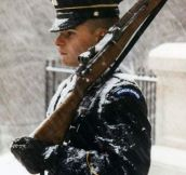 Guards At The Tomb Of The Unknown Soldier, Standing Fast During A Superstorm