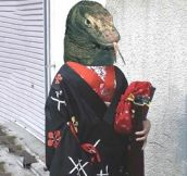 The Kimono Dragon
