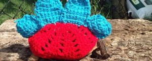 Awesome Knitted Tortoise Shell