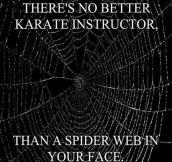 Best Karate Instructor Ever