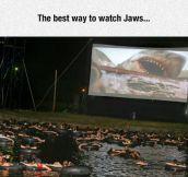 Best Way To Watch Jaws