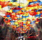 Beautiful Street In Agueda, Portugal