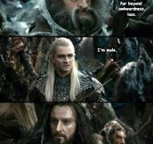 Elves And Dwarves Conundrum