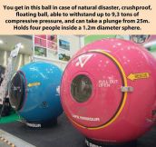In Case Of Natural Disaster