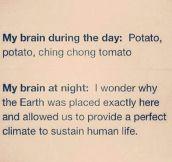My Brain: Day Vs. Night