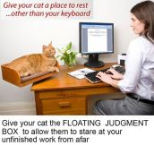 The Floating Judgment Box