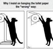 Toilet Paper When You Have A Cat