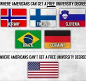Free Degree