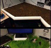 Hope He Likes His New Environmental Desk