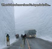 60 Feet Of Snow In Japan