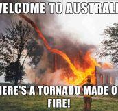 Australia Being Australia