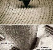 The Waveform Of The Music Itself