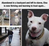 Elsa Loves Life
