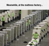 Mattress Factory Breaks