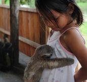 Baby Sloth Hugs Girl