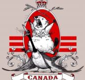 The New Canadian Flag Should Have This