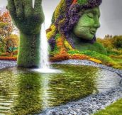 Amazing Botanical Garden In Montreal