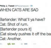 Sad Cat Walks Into A Bar
