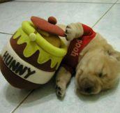 Pooh Is Sleepy