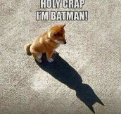 Very Gotham, Much Hero