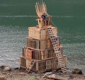 The Game Of Pallets
