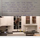 Dear Neighbor, I Think I Solved Your Problem
