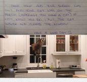 Dear Neighbor, I Think I Solved Your Problem