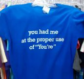 Perfect Shirt For Grammar Lovers