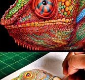 Incredibly Detailed Drawing Of A Chameleon