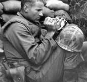 A sergeant looks after a 2-week-old kitten during the Korean War