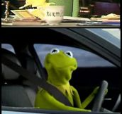 Favorite Thing About Kermit