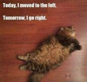 Taking Exercise Seriously