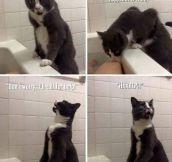 Wait There, I'll Send Help