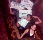 14 Hilarious Marriage Proposals That Will Give You Cold Feet