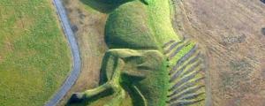 Amazing Horse Field Design