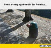 Cheap Apartment
