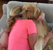 Floof hug to brighten your day