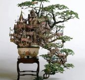 Bonsai Tree Castle