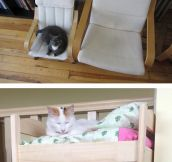 Kitty Furniture