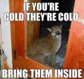 It's Getting Close To Winter, Don't Forget About Your Animals