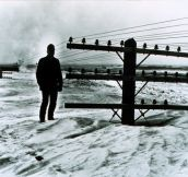 40 Feet Of Snow, North Dakota 1966