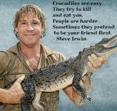 Steve's Wise Words