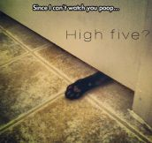 Awkward High Five