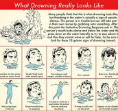 What Drowning Looks Like