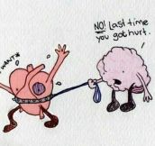 Difficult Relationship Between The Heart And The Brain