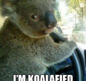 Unconventional Driver
