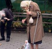 Puppeteer In NYC