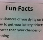 Fun Fact About The Lottery