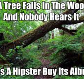 If A Tree Falls In The Woods