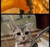 Traumatized By Baths